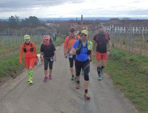 Trail du Petit Ballon - kurz nach dem Start