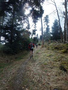 Trail du Petit Ballon - bergauf und bergauf