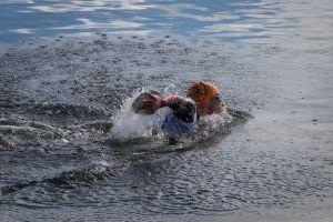 1. SwimRun Hof - Sprint, schwimmen
